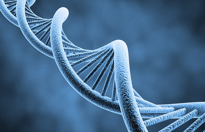 DNA and Paternity Testing