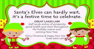 Merry Christmas and Happy New Years from Great Lakes Labs!